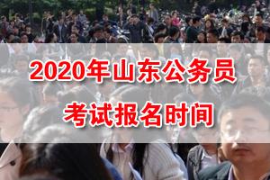 2020年山東省考網上報名時間